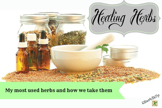 Healing Herbs and How We Take Them