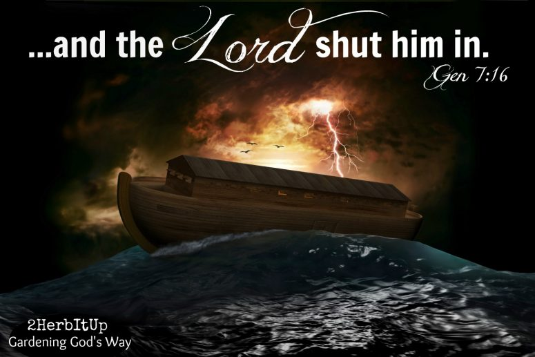 Trusting the Lord to Shut Me In