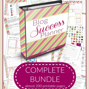 What an amazing planner for blogging! This is more than a planner, it's a course.