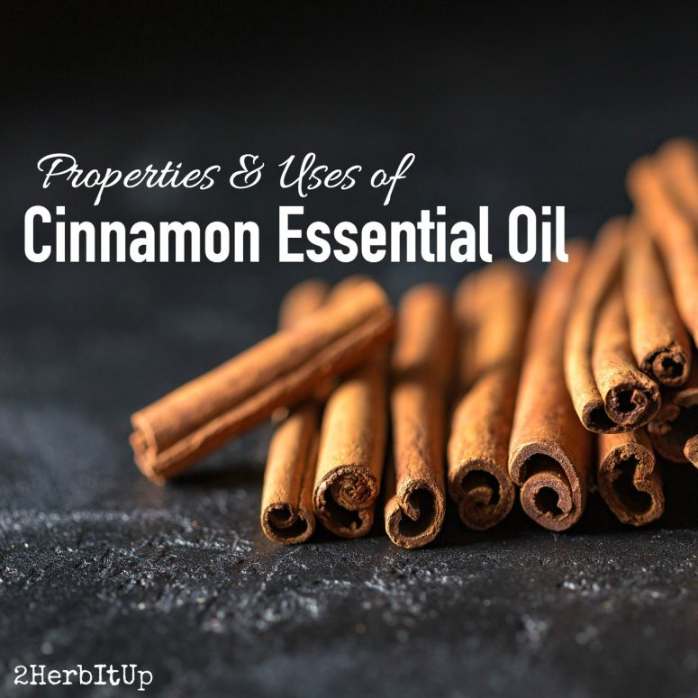 Easy Uses for Cinnamon Essential Oil