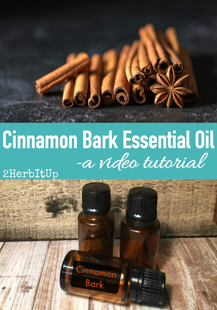 Great, informative video on cinnamon bark essential oil tips, uses, and properties.