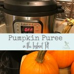 Use your Instant Pot to make quick, smooth pumpkin puree.