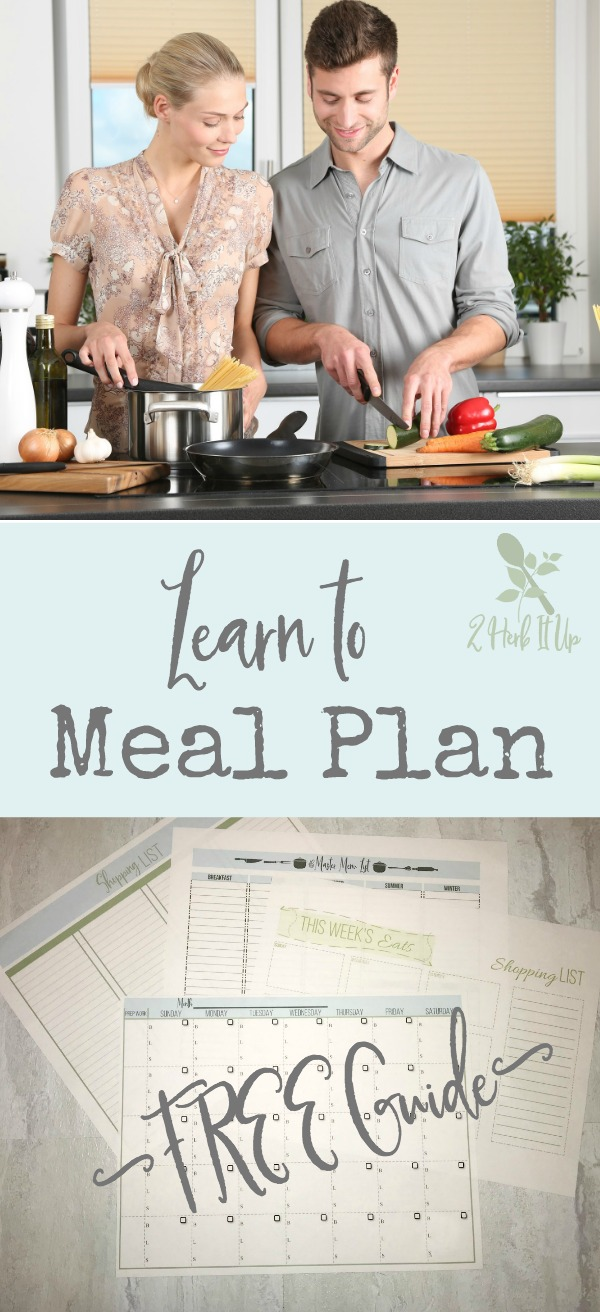 Lean to meal plan, why it's so vital and get a free guide to help.