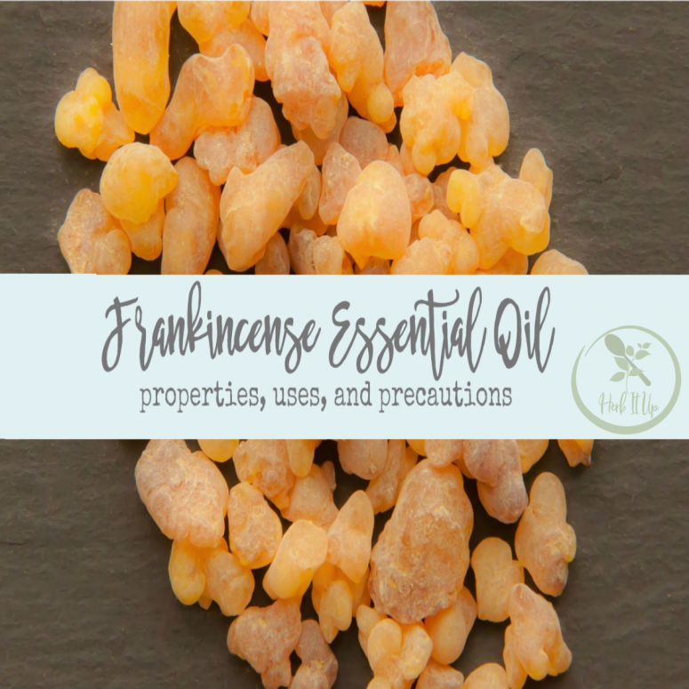 Frankincense, the King of All Essential Oils, Benefits and Uses