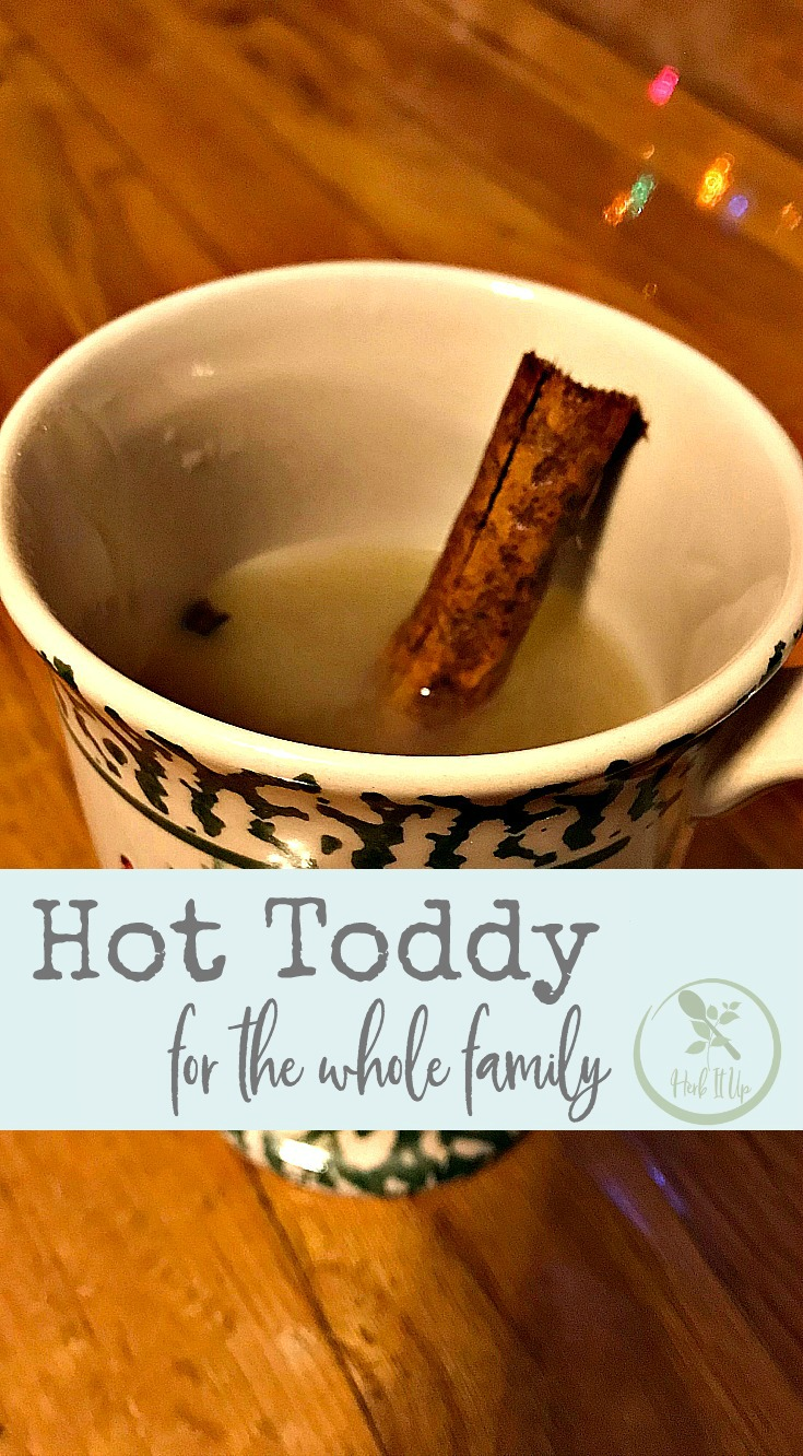 A new twist on the classic hot toddy that makes it fit for the whole family.