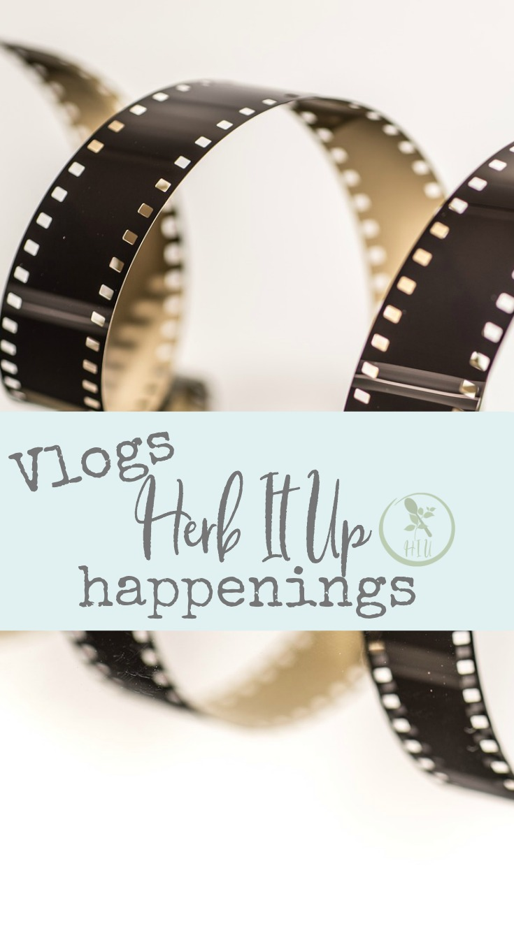 Check out the new vlogs on YouTube. New vlogs with behind the scenes of our daily life.