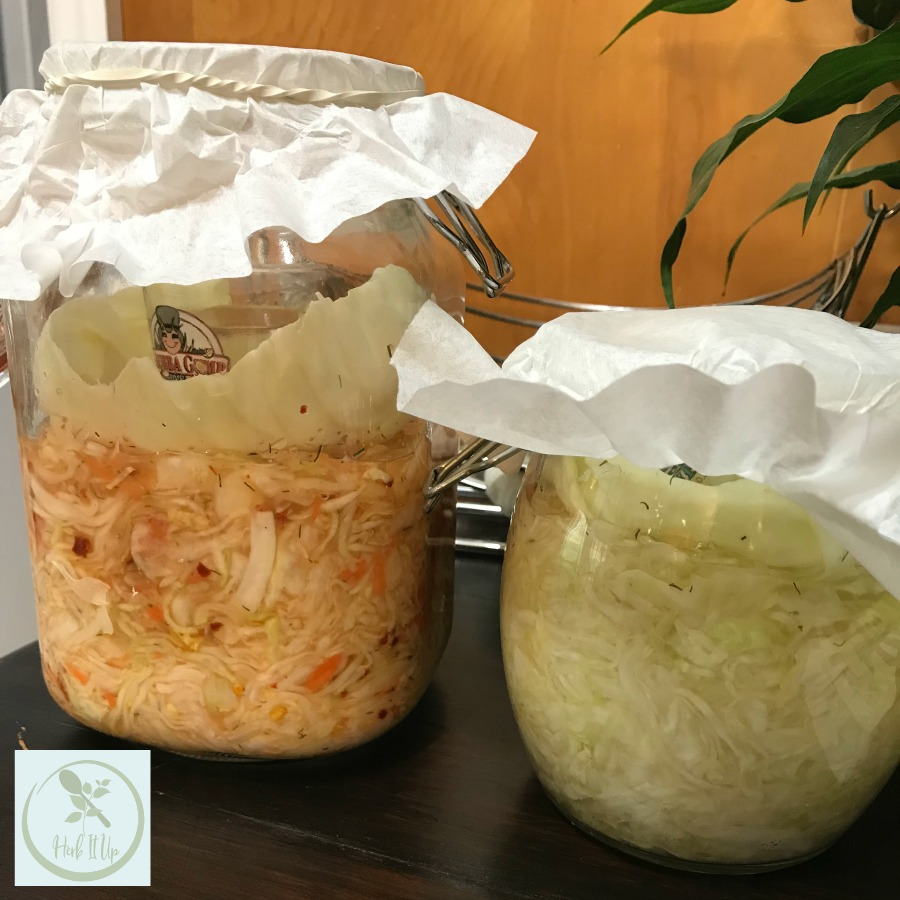 How to make kraut or kimchi
