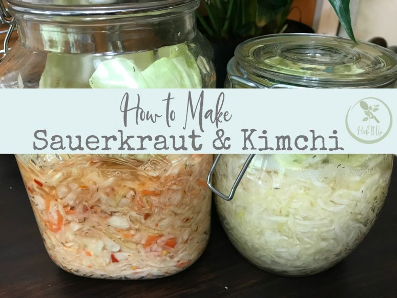 How to Make Sauerkraut or Kimchi